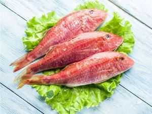 Picture of Red Mullet Whole Fish