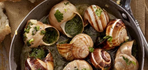 Escargot in Shell with Herb Butter Recipe
