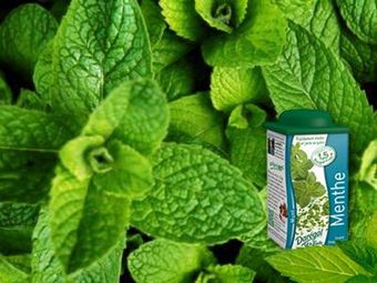 Picture of Mint (individually frozen)