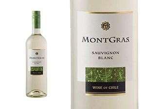 Picture of Montgras Sauvignon Blanc