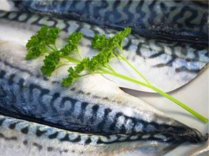 Picture of Saba Mackerel Fillet
