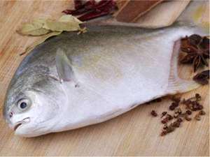 Picture of Pompano Whole Fish