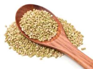 Picture of Buckwheat Seeds